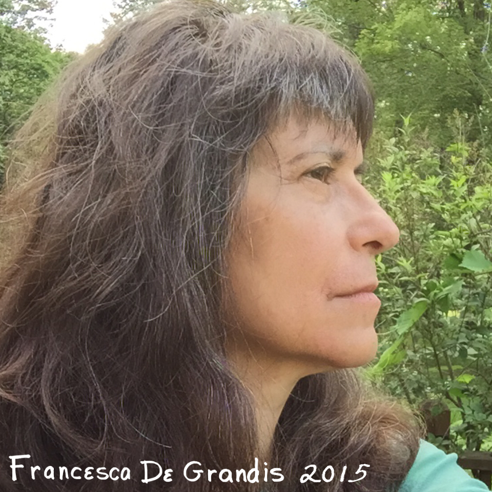 FDG2015Profile